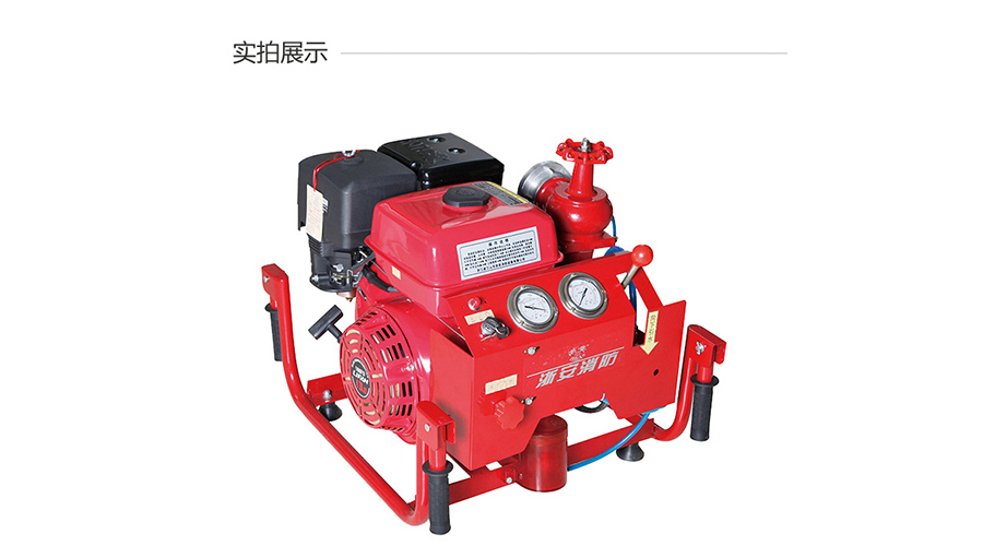 浙安手抬机动消防泵 13马力